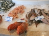 fish_market_portugal